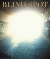Blindspot - Issue 40